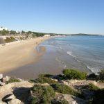 Donem suport al projecte de recuperació de dunes a la Platja Llarga de Tarragona