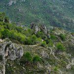 GEPEC denunciarà davant Unió Europea si no s'atura l'obertura de pistes a la Serra de Cardó