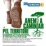 Caminada solidària en benefici de la Marató de TV3 2016