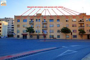Pinxos anti-coloms letals a edificis de Lleida