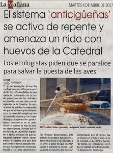 Aturat el sistema que foragitava les cigonyes de la Catedral Nova de Lleida