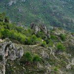 Aclariments del GEPEC-Ecologistes de Catalunya sobre el foc de Tivenys