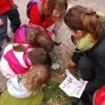 Inscripcions obertes al nou curs de l'Escola de Naturalistes del GEPEC