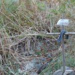 Un nou episodi de contaminació d'aigua a Torroja del Priorat