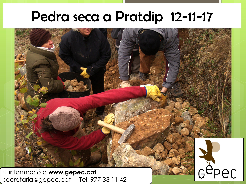 Diumenge 12 de novembre, Pedra seca a Pratdip