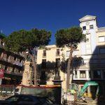 L'Ajuntament de Reus vol tallar els pins, malgrat el compromís amb els veïns