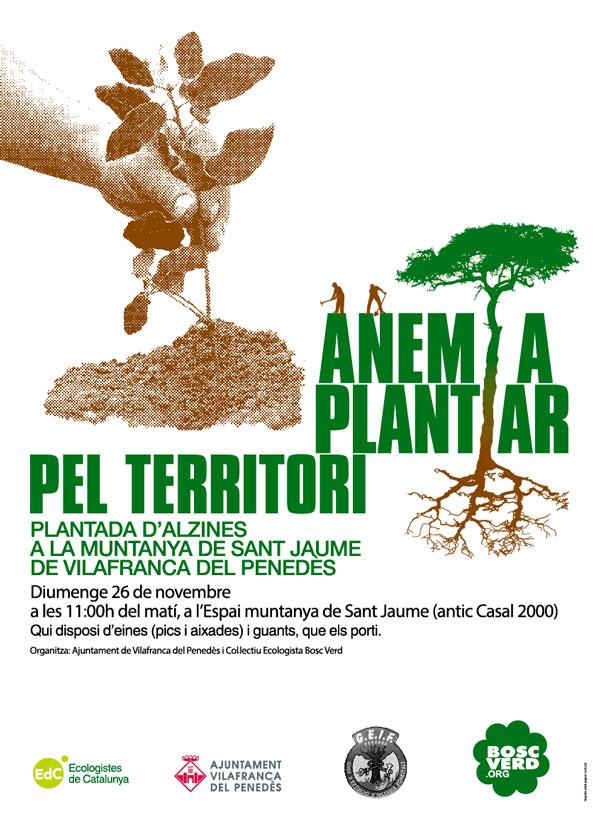 Plantació forestal a la muntanya de Sant Jaume