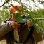 Grups ecologistes s'uneixen per denunciar el negoci que amaga la caça