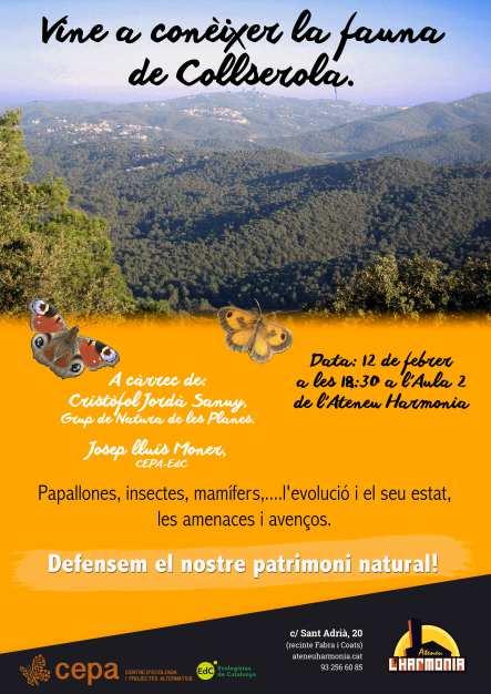 Xerrada sobre la biodiversitat a Collserola