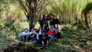 Darrera jornada d'extracció de canya de la temporada