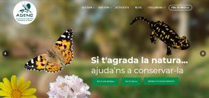 ESTRENEM PÀGINA WEB!