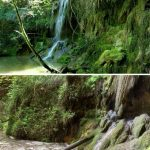 Limnos i Naturalistes de Girona denuncien un abocament directe de purins al Gorg Blau de Vilademuls.