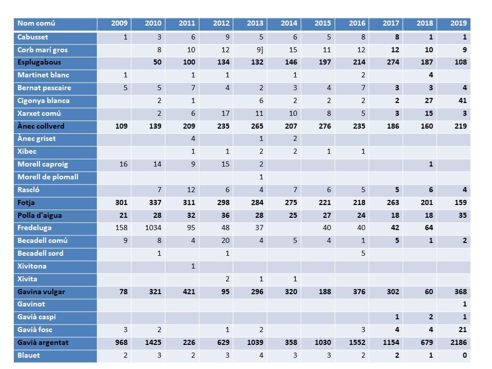 Variacions importants en el nombre d'ocells aquàtics en el XXVè cens d'ocells aquàtics de l'Estany de Banyoles (dades provisionals)