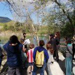 Els amics de la tortuga descobreixen els secrets de la tortuga d'estany a l'Estany de Banyoles