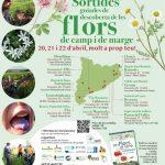 Sortida Guiada de descoberta de les flors de camp i marges al Puig de Sant Martirià