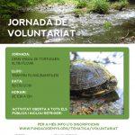 8 de Juny NOVA DATA cens de tortugues al tram mig del riu Fluvià