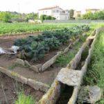 Article sobre els horts de Banyoles a la Revista Catalana d'Etnologia