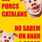 Els porcs catalans ja no saben on anar a cagar