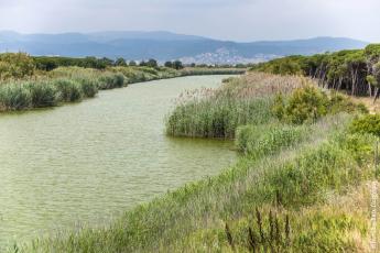 Waterprotect aporta eines per  millorar la qualitat de l'aigua al Baix Llobregat