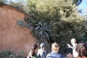 Un capvespre al Parc Grípia-Ribatallada