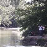 Es censen un mínim de 20 tortugues de Florida al riu Fluvia al Pla de l'Estany