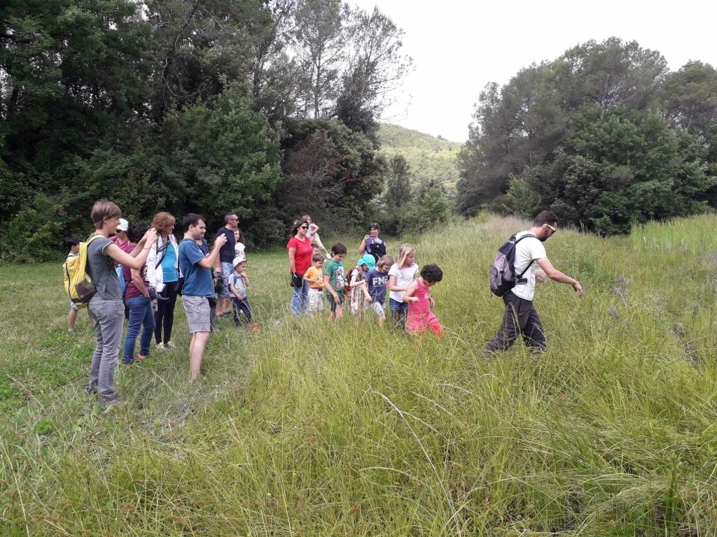 S'alliberen 5 tortugues d'estany per a reforçar la població de l'estany de Banyoles