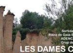 CAP1-Dames-300x109.jpg