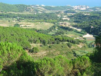 """La proposta de """"Fot-li Castanya"""" a Canet per viure un futur ambiental."""