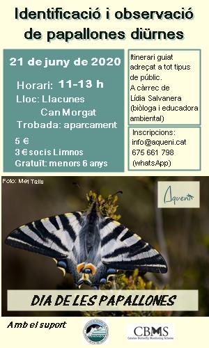 Sortida d'identificació i observació de papallones diürnes 21 Juny