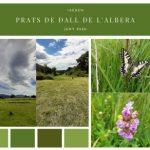 Inventaris florístics als prats de dall a l'Albera