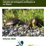 El Grup d'Estudi i Conservació de les Tortugues de l'ADENC (GECTA) presenta els resultats del 2020
