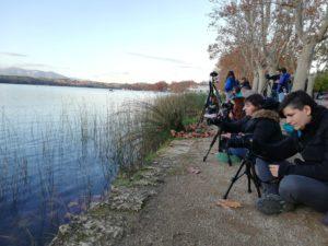 Programat el cens d'ocells aquàtics 2021 al Pla de l'Estany